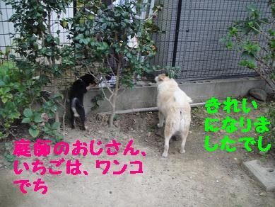 c0211642_2121920.jpg