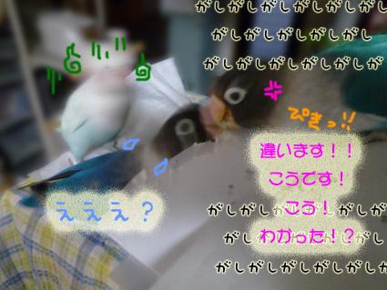 e0147757_23355216.jpg
