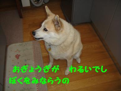 c0211642_22371864.jpg