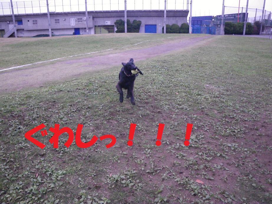 a0104464_1204865.jpg