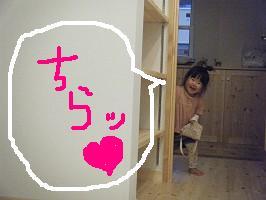 e0175148_2013508.jpg