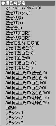 c0168669_13409.jpg