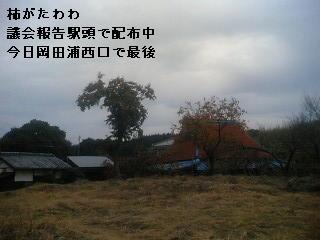 c0036831_5225025.jpg