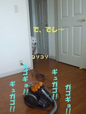 e0176159_23243376.jpg