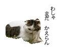 c0201577_13393852.jpg