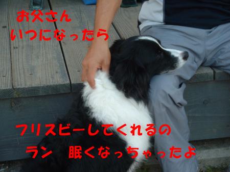 c0120585_9461368.jpg