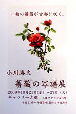 c0221993_10264631.jpg