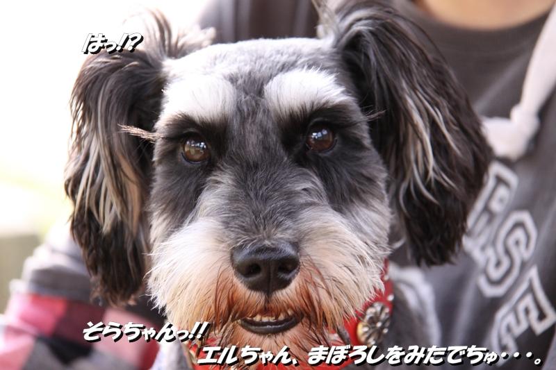 a0124925_2011164.jpg
