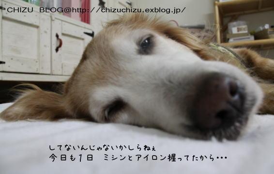c0017311_21322028.jpg