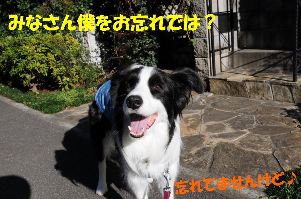 c0147241_2340218.jpg