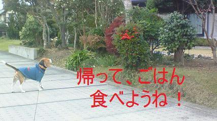 c0205806_18255661.jpg