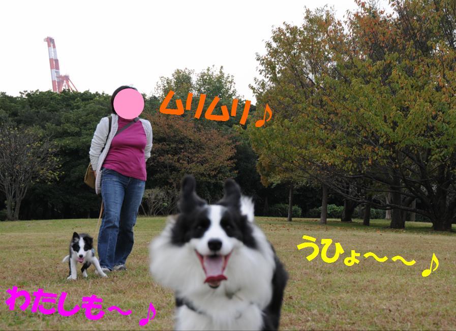 c0147241_2218875.jpg