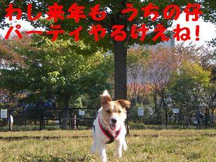 c0188294_1015868.jpg