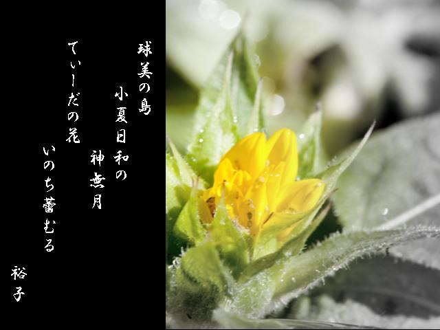 c0174019_1491588.jpg
