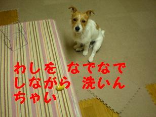 c0188294_12524650.jpg