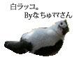 c0201577_10535125.jpg