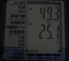 493tassei.JPG