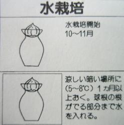 mizusaihou.jpg