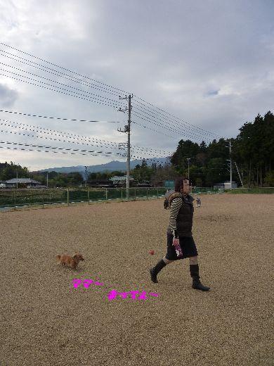 c0097309_12144534.jpg
