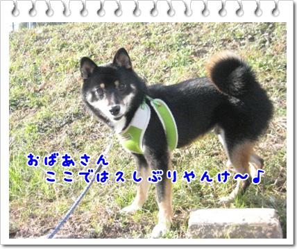 c0049950_222329.jpg