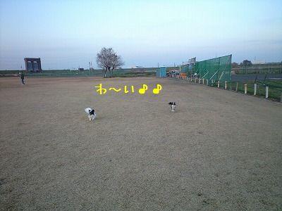 e0059267_170207.jpg