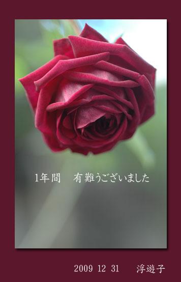 a0073275_2226559.jpg