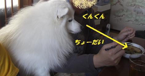c0005619_16535045.jpg