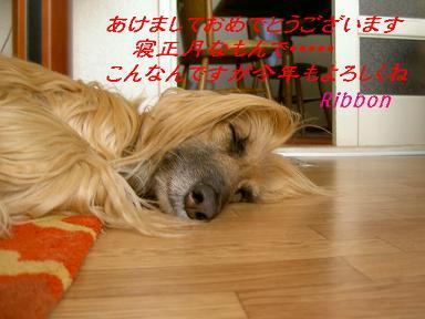 c0192319_11212033.jpg