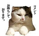 c0201577_22232532.jpg