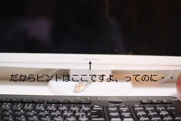 e0156649_13221318.jpg