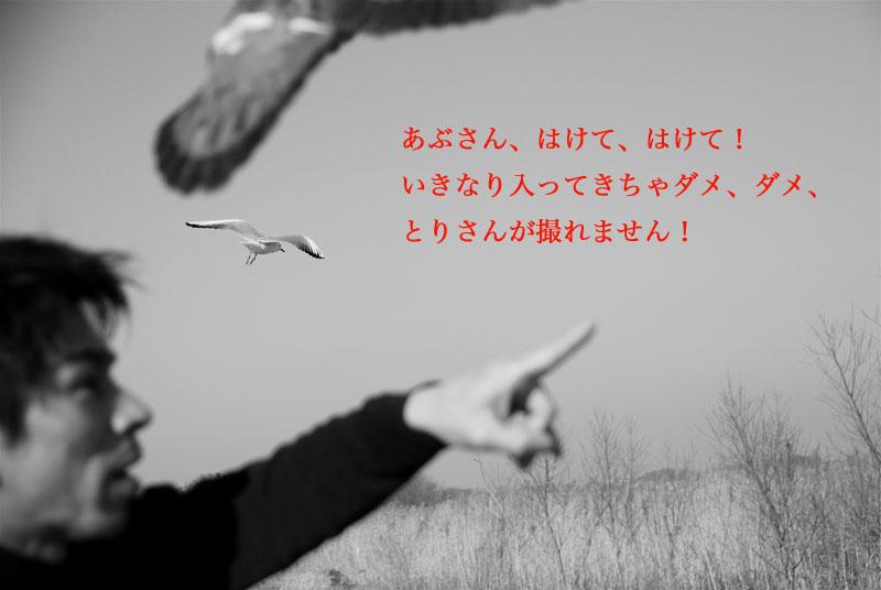c0118394_0341114.jpg