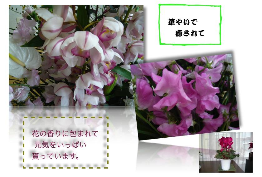 e0111220_1431411.jpg