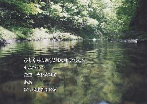 a0046462_23443088.jpg