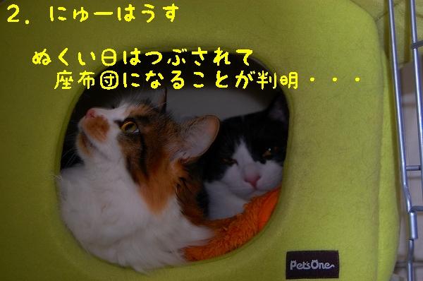 c0181639_130175.jpg