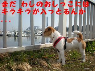 c0188294_142898.jpg