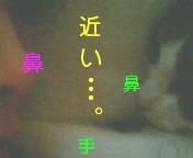 c0052756_20362212.jpg