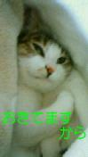 c0052756_223061.jpg