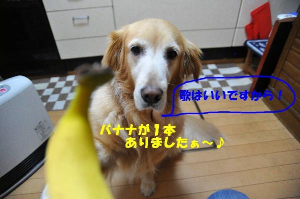 e0020166_20363887.jpg