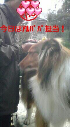 c0189388_041383.jpg