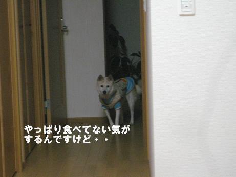 c0000189_14404146.jpg