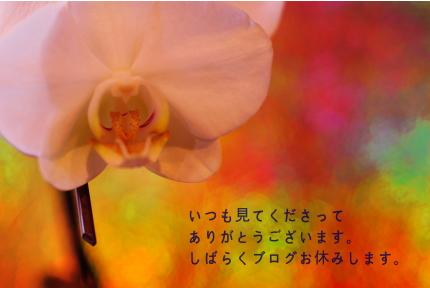 c0181450_22143927.jpg