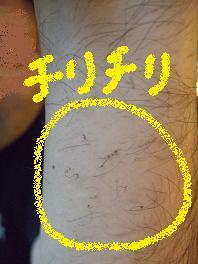 c0220105_206048.jpg