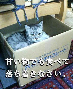 a0131387_0144670.jpg