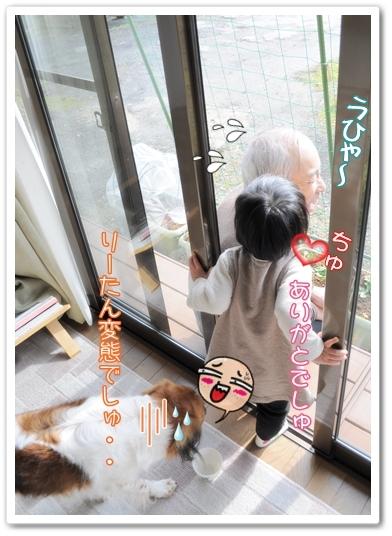 c0174773_2011402.jpg