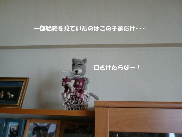 e0094407_16184746.jpg
