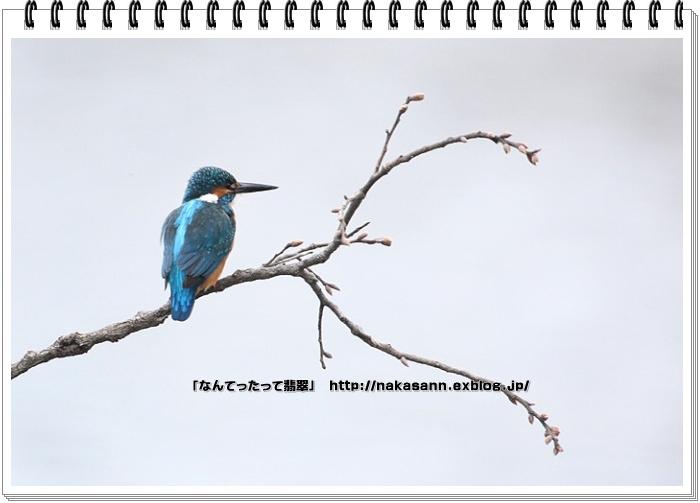 c0128399_1941092.jpg