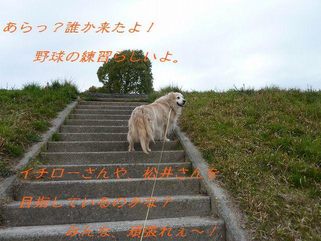 a0034382_0351183.jpg