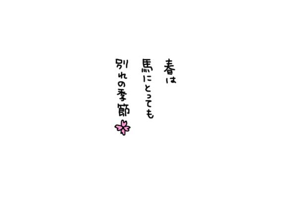 a0093189_16554586.jpg