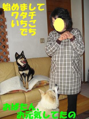 c0211642_21445967.jpg