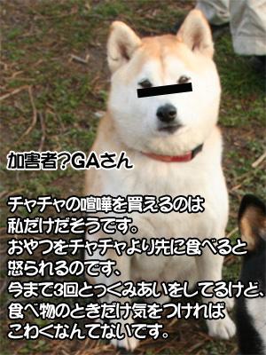 c0166018_11345631.jpg